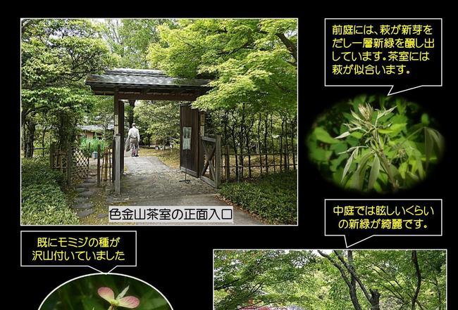 0002 - コピー.jpg