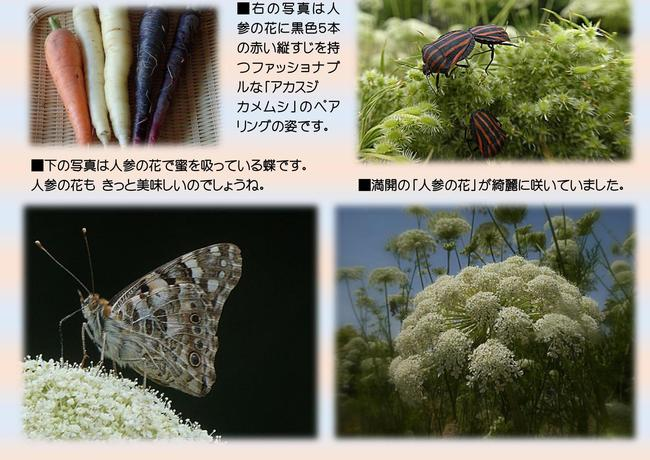 0001 - コピー.jpg